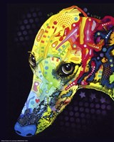 Greyhound Fine Art Print