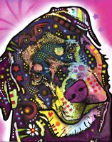 Rottie Fine Art Print