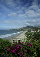 Monarch Beach 1 by Christopher Bliss - various sizes