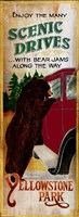 Bear Jams Fine Art Print