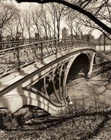Gothic Bridge NYC Framed Print