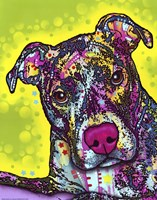 Brindle by Dean Russo - various sizes, FulcrumGallery.com brand