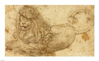 Study of a Lion Fine Art Print