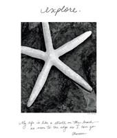 Explore by Debra Van Swearingen - various sizes