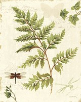 Ivies and Ferns I Fine Art Print