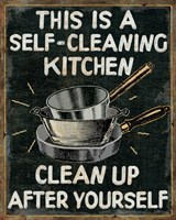 Self Cleaning Kitchen Fine Art Print