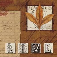 Natures Journal - Live Framed Print