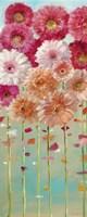 Daisies Spring I Fine Art Print