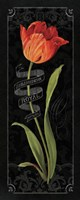Tulipa Botanica II by Lisa Audit - various sizes - $25.99