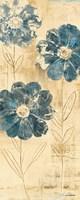 Daisy Trio II Fine Art Print