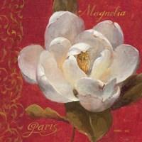 Paris Blossom III by Danhui Nai - various sizes