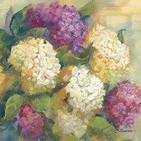Hydrangea Delight II by Carol Rowan - various sizes, FulcrumGallery.com brand