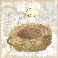 Botanical Nest I Fine Art Print