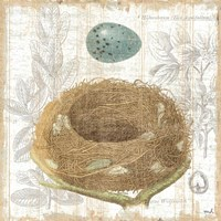 Botanical Nest III Fine Art Print