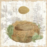 Botanical Nest IV Fine Art Print