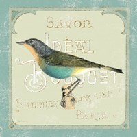 Parisian Bird II Fine Art Print