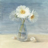 Daisies and Shells Fine Art Print
