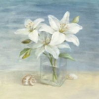Lilies and Shells Framed Print