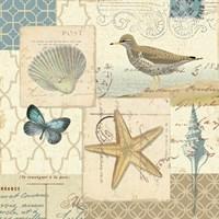 Coastal Collage IV Fine Art Print