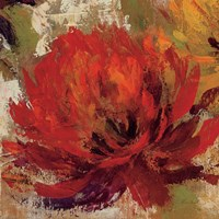 Fiery Dahlias II Crop Fine Art Print