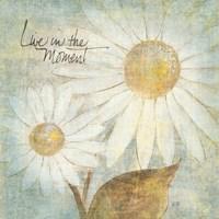 Daisy Do III - Live in the Moment Fine Art Print