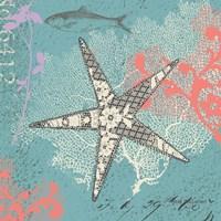 Starfish on Aqua Fine Art Print