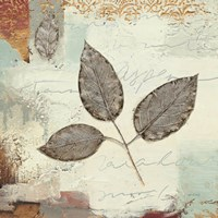 Silver Leaves II by James Wiens - various sizes