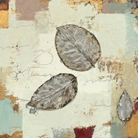Silver Leaves IV by James Wiens - various sizes