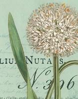 Botanique Bleu II Fine Art Print