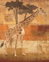 "22"" x 28"" Giraffe Pictures"