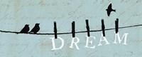 Birds on a Wire - Dream Fine Art Print