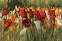 Tipsy Tulips Fine Art Print