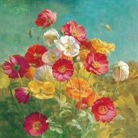 Poppies in the Field by Danhui Nai - various sizes - $37.99