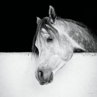 Lonesome Gray Fine Art Print