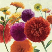 Pure Palette Zinnias by Shirley Novak - various sizes