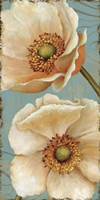 Windflower I by Daphne Brissonnet - various sizes
