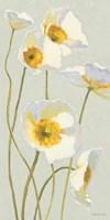 White on White Poppies Panel I by Shirley Novak - various sizes