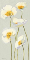 White on White Poppies Panel II by Shirley Novak - various sizes