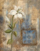 Lily and Tile by Silvia Vassileva - various sizes