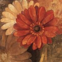 Bold Gerberas III Fine Art Print