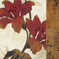 Floral Harmony III by Mo Mullan - various sizes
