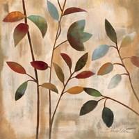 Branches at Sunrise I Fine Art Print