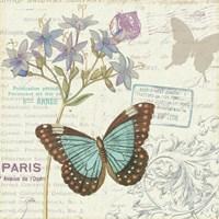 Papillon Tales II Framed Print