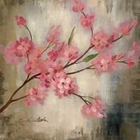 Cherry Blossom I Fine Art Print