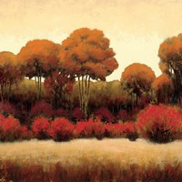 Autumn Forest II by James Wiens - various sizes