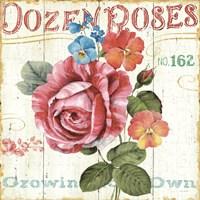 Rose Garden II Fine Art Print