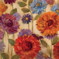 Rainbow Dahlias Crop II Fine Art Print