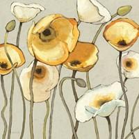 Jaune Gris II by Shirley Novak - various sizes