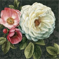 Floral Damask II by Lisa Audit - various sizes