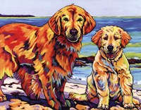 "Ginger & Polar by Sally Evans - 14"" x 11"" - $9.99"